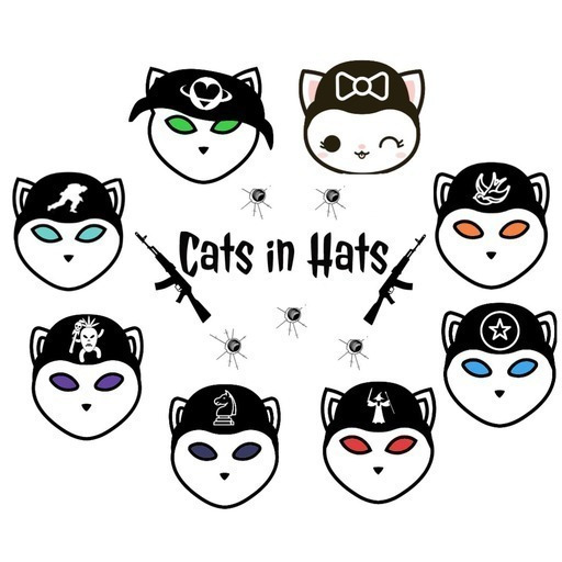 Catsinhatsteam1100square